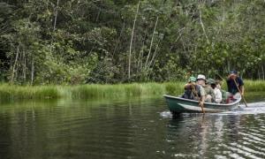 Kanu Regenwald
