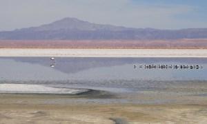 Salar-Atacama