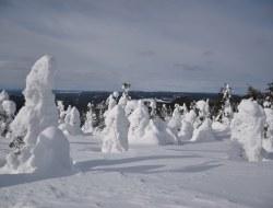 Cross Country Ski und mit dem Schneemobil zum Polarlicht