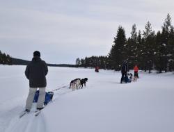 Husky Tour und Schneeschuhwanderung
