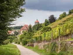 Felsengartenkellerei inkl. Planwagenfahrt und Weinprobe