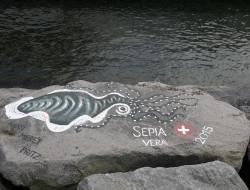Trekkingtour zum Lagoa do Fogo