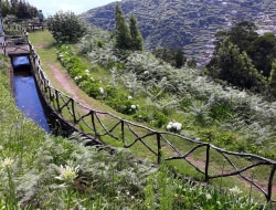 Wandertour im Osten Caniçal-Tunnel - Maroços
