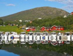 Fotoreise nach Norwegen - Orcas, Buckelwale und Nordlichter