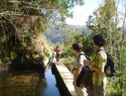 Wandertour im Süden Monte – Camacha
