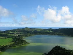 Wal und Definsafari auf Pico Island