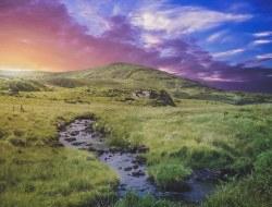 1. Tag|Willkommen in Irland