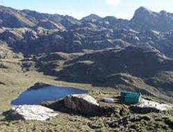 Kiharo Camp 3518 m - Bugata Camp 4062 m