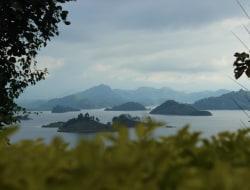 Virunga Mountains - Bwindi Impenetrable National Park