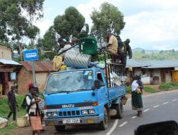 Queen Elisabeth National Park - Entebbe