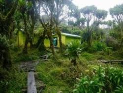 Butawu Camp 3974m - Mutinda Camp 3688m