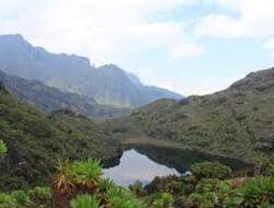 Kasese - Ruwenzori National Park 1450 m - Sine-Hütte 2596 m