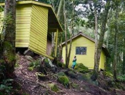 Sine-Hütte 2596 m - Kiharo Camp 3518 m