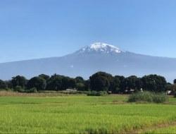 Ankunft am Kilimajaro Airport