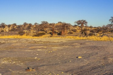 Anschlusstour zu SFBO125 6 Tage Camping - Lodgereise Kubu Island und Makgadikgadi Pans