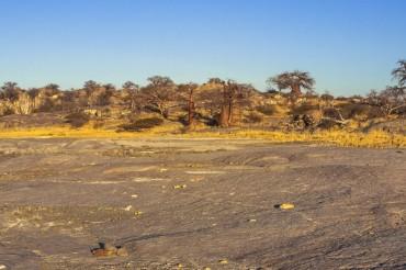 Anschlusstour zu SFBO125 6 Tage Camping - Lodgereise Kubu Island und Makgadikgadi Pans