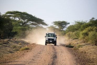 8 Tage Kleingruppenreise - Wildnis zwischen Kilimanjaro & Serengeti mit Badeaufenthalt auf Sansibar für Familie Braune