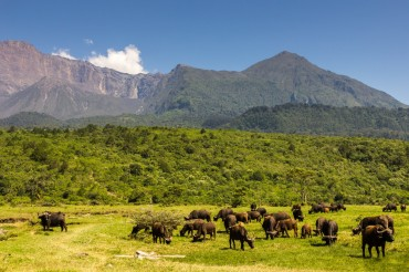 21 Tage Selbstfahrerreise Tansania mit anschliessendem Sansibar Badeurlaub