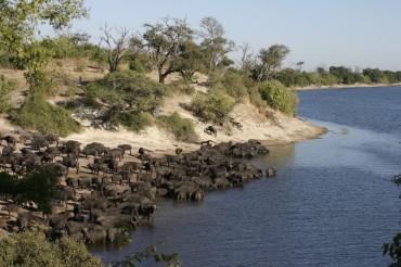 15 Tage Camping Gruppenreise mit 12 Teilnehmern durch Botswana rund um das Okavango Delta