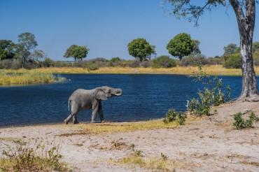 21 Tage Camping Kleingruppenreise von Sambia nach Botswana und Namibia
