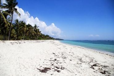 6 Tage Strandurlaub in Kenia in der Coconut Beach Boutique Lodge
