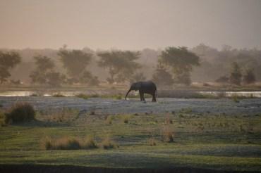 14 Tage Kleingruppenreise von Ost nach West durch Simbabwe