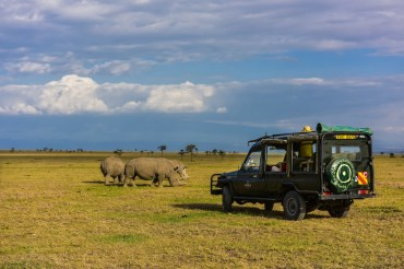 8 Tage Kenia Privatsafari Horizon