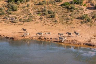 20 Tage Mietwagenreise von Johannesburg bis Kapstadt