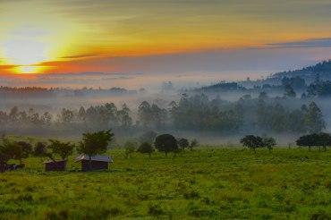 16 Tage Uganda Selbstfahrerreise