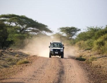 8 Tage Kleingruppenreise - Wildnis zwischen Kilimanjaro & Serengeti