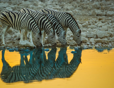 13 Tage Namibia Selbstfahrerreise Gondwana Collection