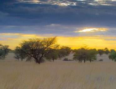 20 Tage Mietwagenreise durch den Süden Namibias mit Kgalagadi Transfrontier Park
