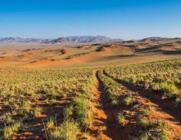 16 Tage Namibia Gästefarm Reise