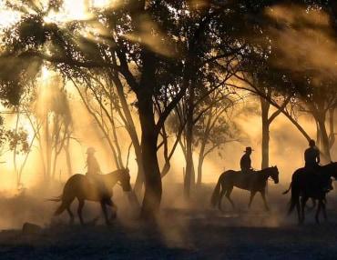 8 Tage Reitsafari im Okavango Delta in Botswana