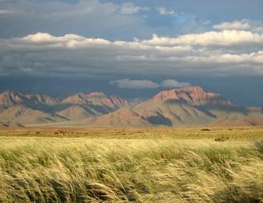 Tok Tokkie Trails Namibia
