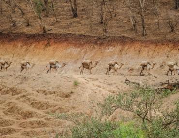 14 Tage Äthiopien Rundreise