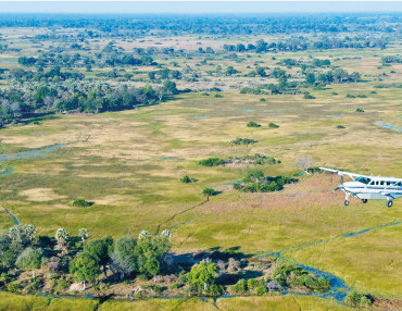 8 Tage Flugsafari - out of Kenia