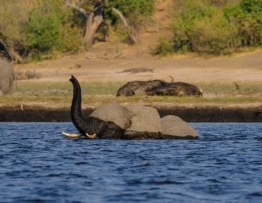 19 Tage Botswana Camping Reise mit dem Makgadikgadi Pans National Park & Central Kalahari Game Reserve