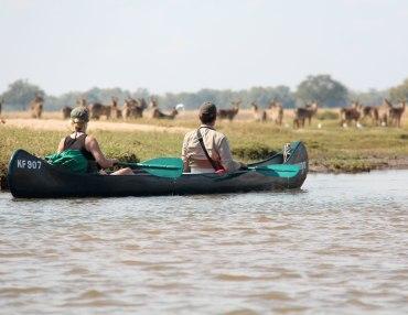 3 Tage Kanu Safari von Kariba nach Chirundu
