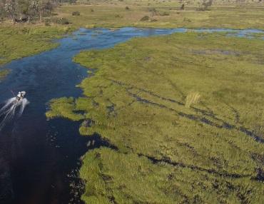 12 Tage Mietwagenreise zu den Höhepunkten im Norden von Botswana