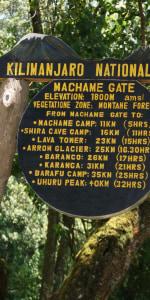 Lemosho Gate Kilimanjaro