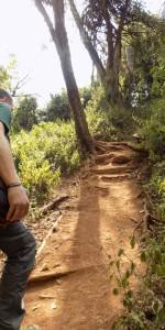 Lemosho Trail