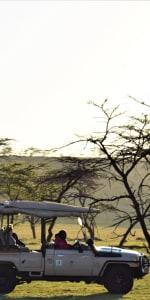 Serengeti mit MeineWelt-Reisen