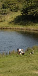 Momella See Arusha Nationalpark