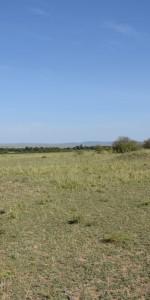 Timo in der Massai Mara