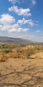 beho beho hills southern tansania bearbeitet.jpg