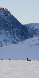 hundeschlitten-bergwelt-schweden