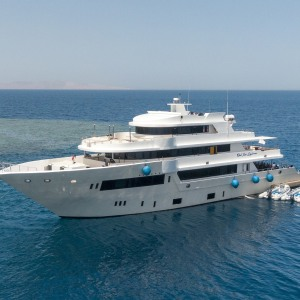 Red Sea Explorer Tauchsafari Highlight 2021