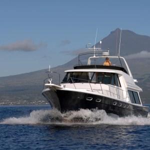 7 Tage Blauwalexpedition - Walbeobachtungen auf den Azoren
