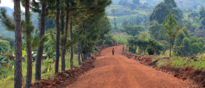 4-road to Bwindi-meineweltreisen.jpg